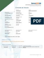 consulta-veiculo (1)