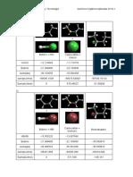Energías de adicion 2-buteno a distintos ácidos halógenos utilizando el software Argus Lab.