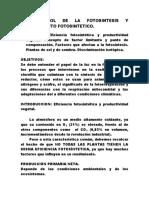 TEMA 13.Control Fotosintesis y Rendimiento Fotosintetico