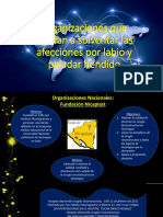 LPH-organizaciones.pptx