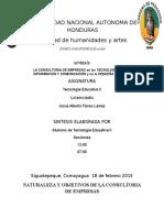 256594592 Manual Guia Para El Consultor