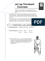 seated_leg_theraband.pdf