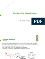 31NucleotideMetabolism (1).pdf