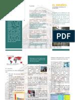 Triptico Final PDF