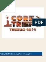 Bases de Trabajos de Investigación Del v Coretriep-2019 - Copia
