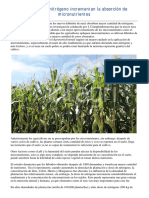 20. Altas dosis de nitrogeno incrementan la absorcion de micronutrientes.pdf