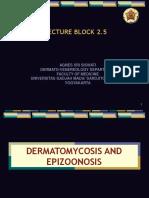 dermatomycosis 2009