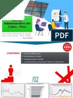 Manejo Administrativo Del Cobre - Perú