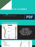 Anatomia de Columna_gineco