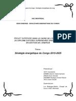 DESS CONGO Strategie Rapport