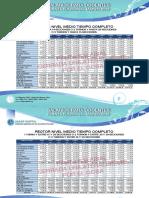 NIVEL MEDIO COMPLETO (1).pdf