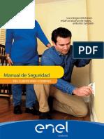 2 24 2012 2-43-15 PM Manual de Seguridad CODENSA