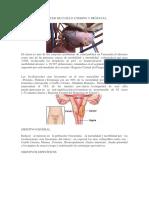Programa de Cancer de Cuello Uterino y Prostata