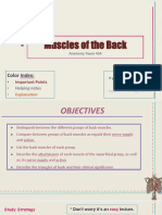 5.Muscles of the Back.pdf