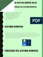 Enfermedades Del Sistema Nervioso