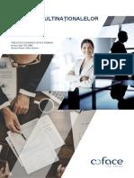 Impactul companiilor multinaționale în România