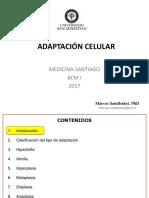 Adaptacion Celular Medicina-santiago Bcm