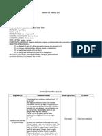 Proiect Didactic-Etica in Afaceri 1