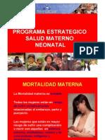 4_ProgSaludMaternoNeonatal