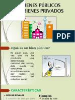 Bienes Publicos y Bienes Privados