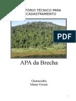 Relatório Técnico APA Brecha