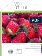 Manual de frutillas/fresas