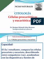 Células Procarióticas y Eucarióticas (s2.1)