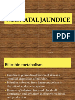 10 Neonatal Jaundice 15.10.14 lecture.pptx