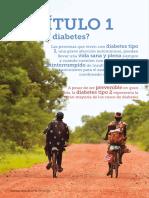 IDF Diabetes Atlas 8E CH 1 ES.pdf