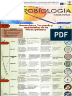 IV.ev2. Catálogo Microorganismos