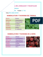 taxonomiadeanimalesyvegetales-130708014844-phpapp01.pdf