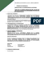 TDR Consultoria