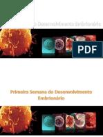 05 Fertilização e Fases Do Desenvilvimento Humano (1)