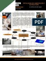 Catalogo Patologias