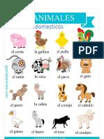 animales domestico.docx