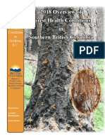 2018 Provincial Report on Forest Health in Southern B.C.