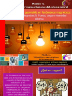 Actividad Integradora 5. Fuerza, Carga e Intensidad Eléctrica/M12