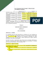 3. SAS Con Gerente Principal Sin Junta Directiva