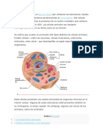 La CELULA ANIMAL.docx