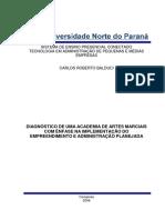 DIAGNOSTICO-DE-UMA-ACADEMIA-DE-ARTES-MARCIAIS-2008.pdf