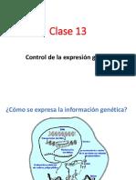 Clase 13 - Regulación de La Expresión Génica