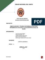 Proyecto Biocatalisis Final