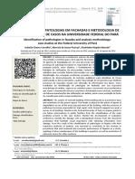 Identificacao de Patologias Em Fachadas