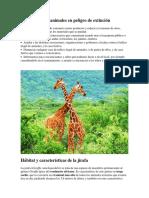 Cómo Proteger Animales en Peligro de Extinción