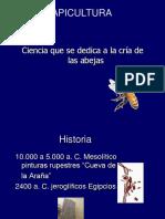 Apicultura 2013 (3).ppt