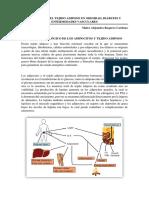 Adipose Tissue Dysfunction in Obesity, Diabetes, And Vascular Diseases (Maira_Alejandra_Baquero_Cardona)