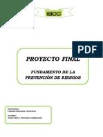 Proyecto Fundamentos de La Prevención de Riesgos Juan Pablo Figueroa Barreaux