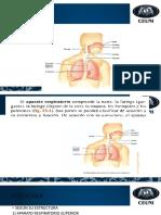 Expocision Medicina
