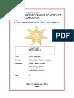 GRUPO N° 01 - OMISION , TENTATIVA