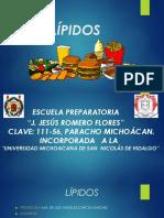 LÍPIDOS2 (1)